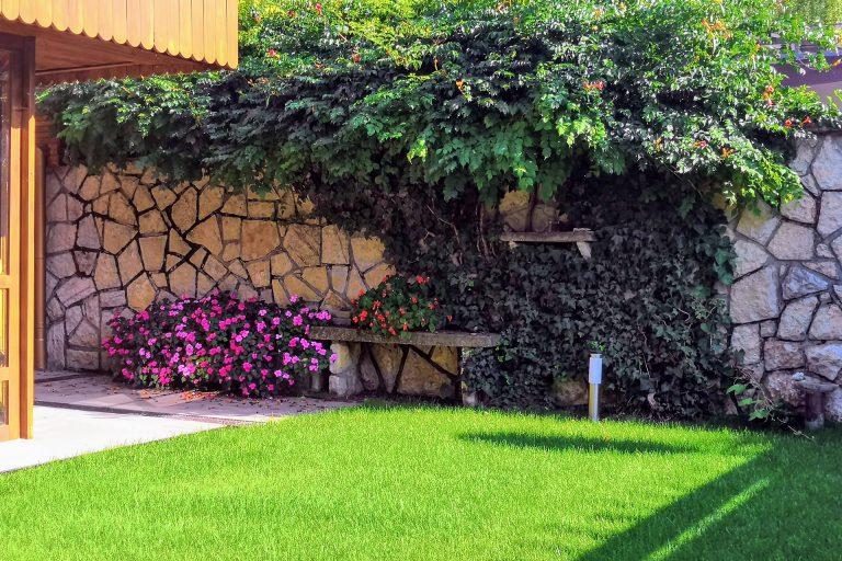 Gyep virágokkal és kúszónövényekkel